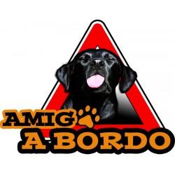Amigx a Bordo