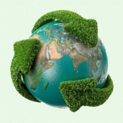 Temática Ecológica