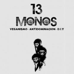 Colectivo 13 Monos
