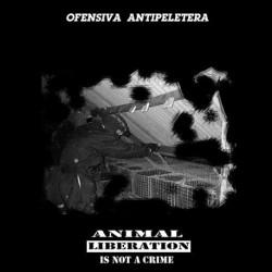 Ofensiva Antipeletera